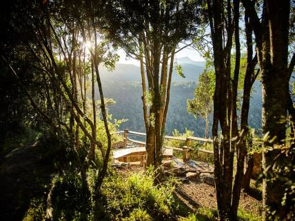Away With The Fairies, Hogsback