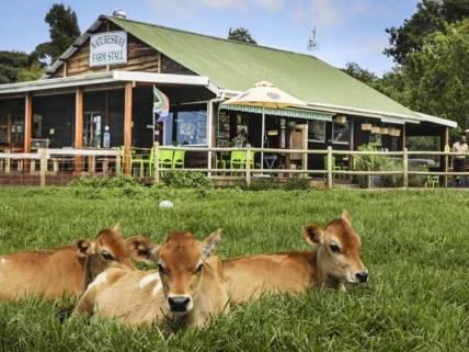 Natures Way Farm Stall & Nursery, Plettenberg Bay